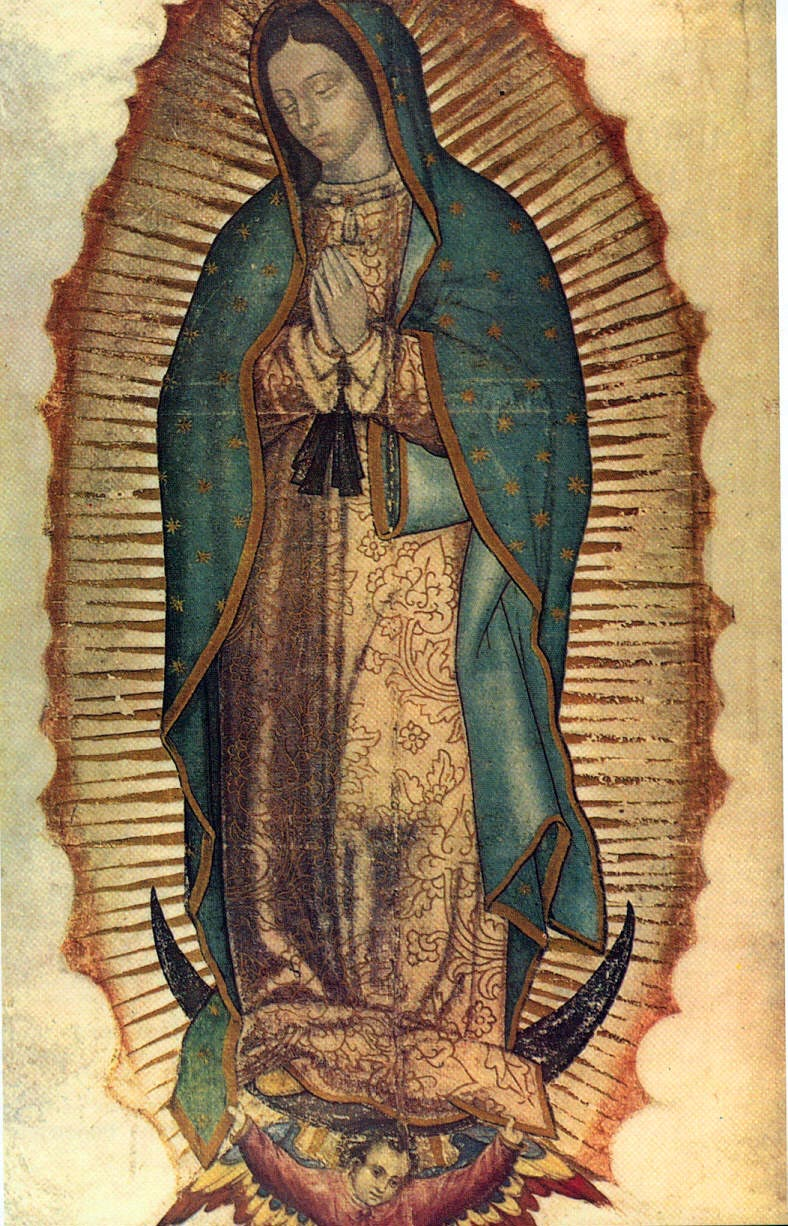 OUR LADY OF GUADALUPE PATRONESS OF THE AMERICAS