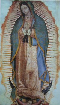 Our Lady of Guadalupe - Patroness of the Americas